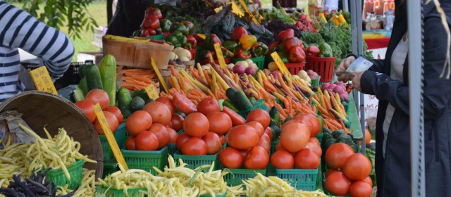 Can organic farming stop world hunger?
