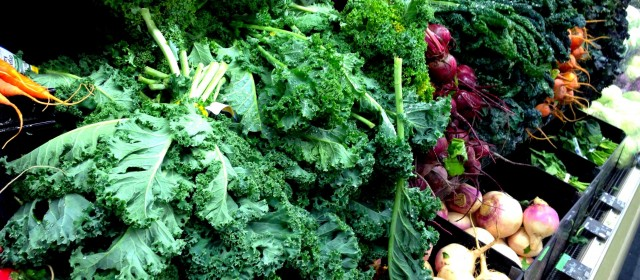The ecological debate: Organic or conventional farming?