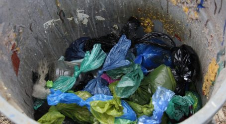 Green Bin plan to include dog poop, plastic sparks uproar