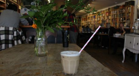 The last straw: Ottawa businesses lead way with plastic ban