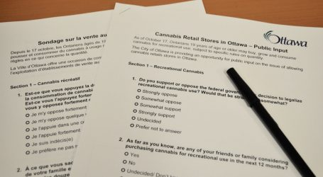 City conducting survey on cannabis retail stores