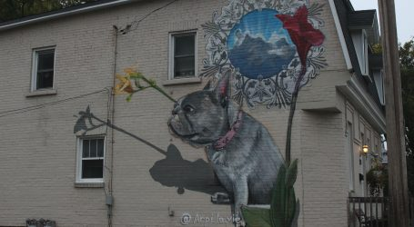 City exempts Hintonburg bulldog mural from bylaw