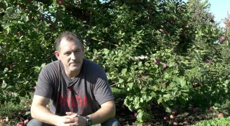 From Apples to Alcohol, the story of Ottawa's first hard cider