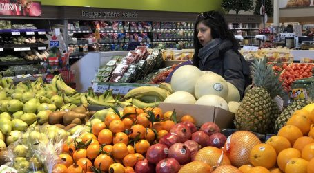 Canadians are wasting food and losing money, study says
