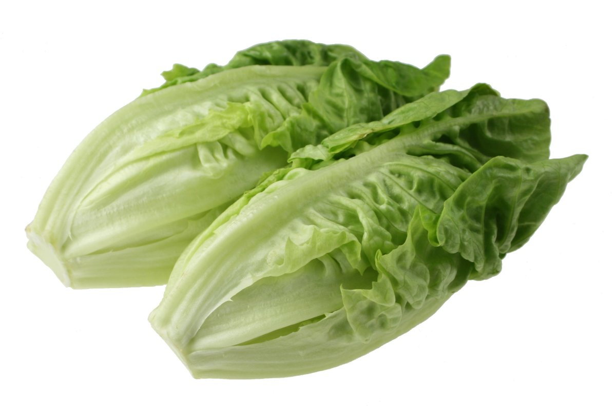 Toss it: Romaine lettuce contaminated by E. coli, health agency warns
