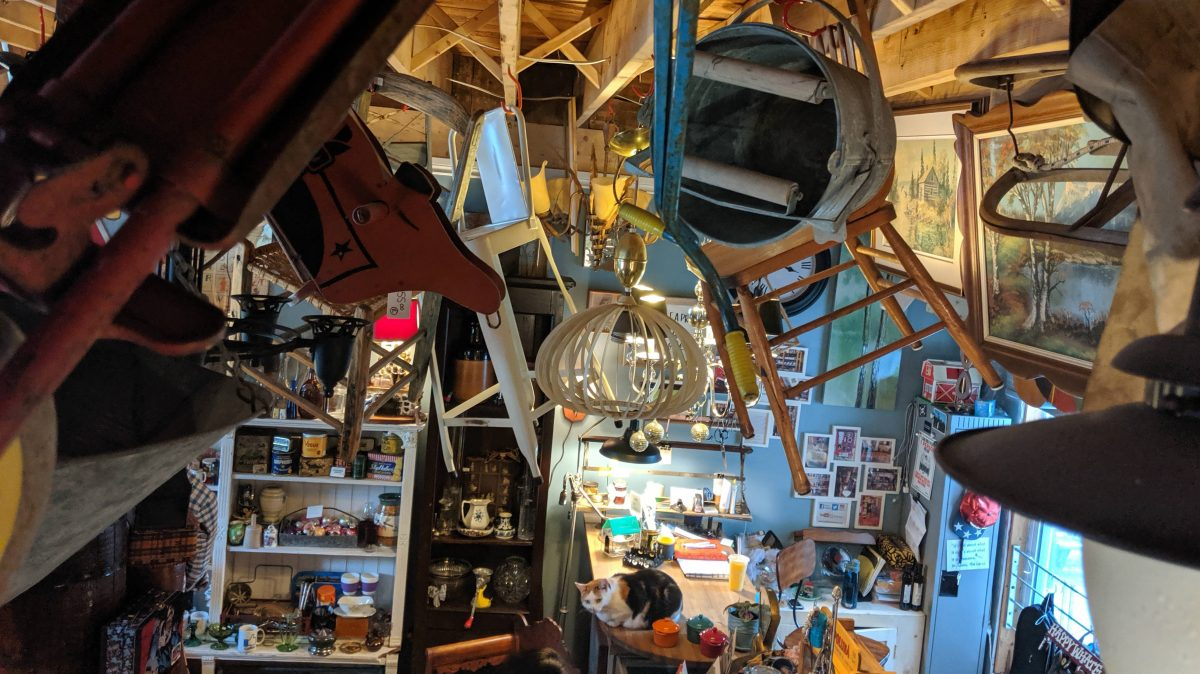 Many objects and chairs hang from the ceiling. A cat is also visible sitting on the counter.