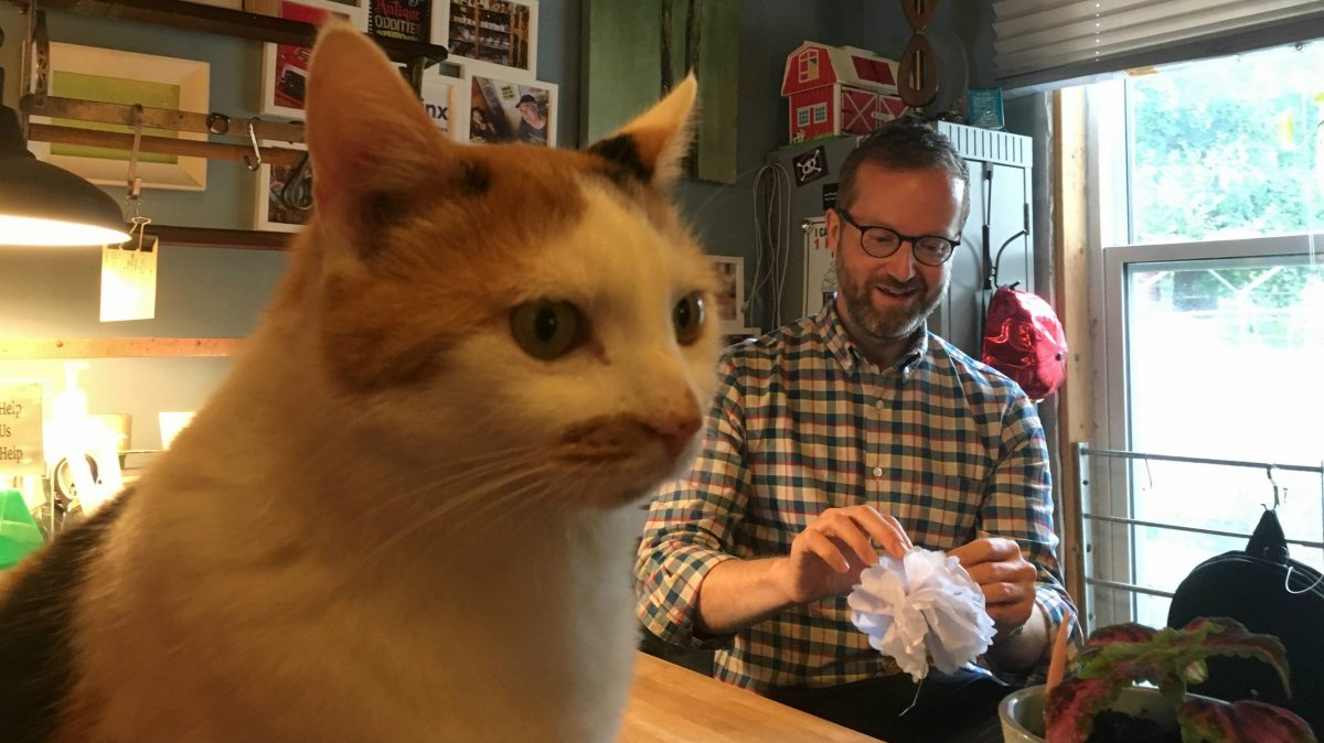 The cat sits on the counter in the forefront while the man folds a white paper flower in the back.