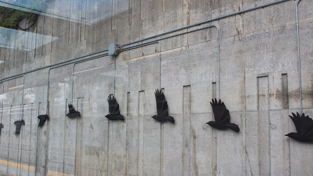Crows fly along as trains zoom by the concrete wall at Lees station.