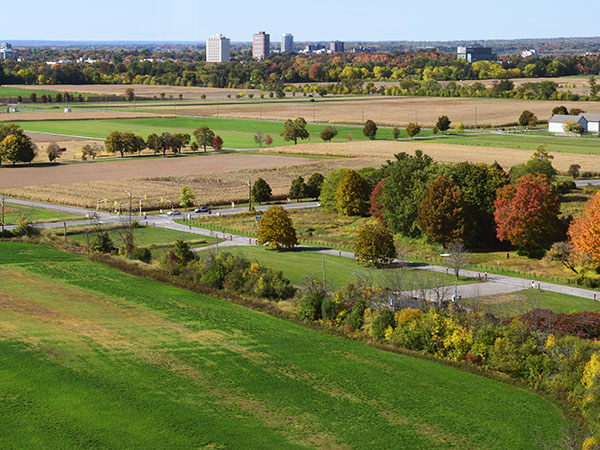 The Central Experimental Farm.