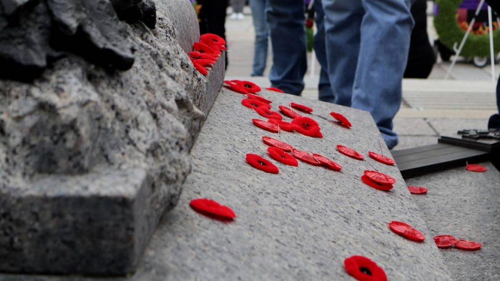 Poppies on the Tomb of the Unknown Soldiers