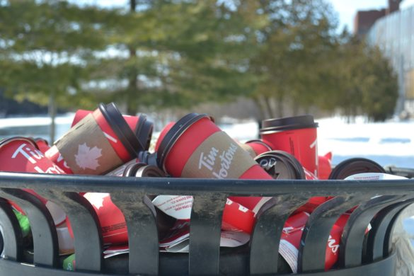 A garbage bin overflowing with Tim Hortons coffee cups.