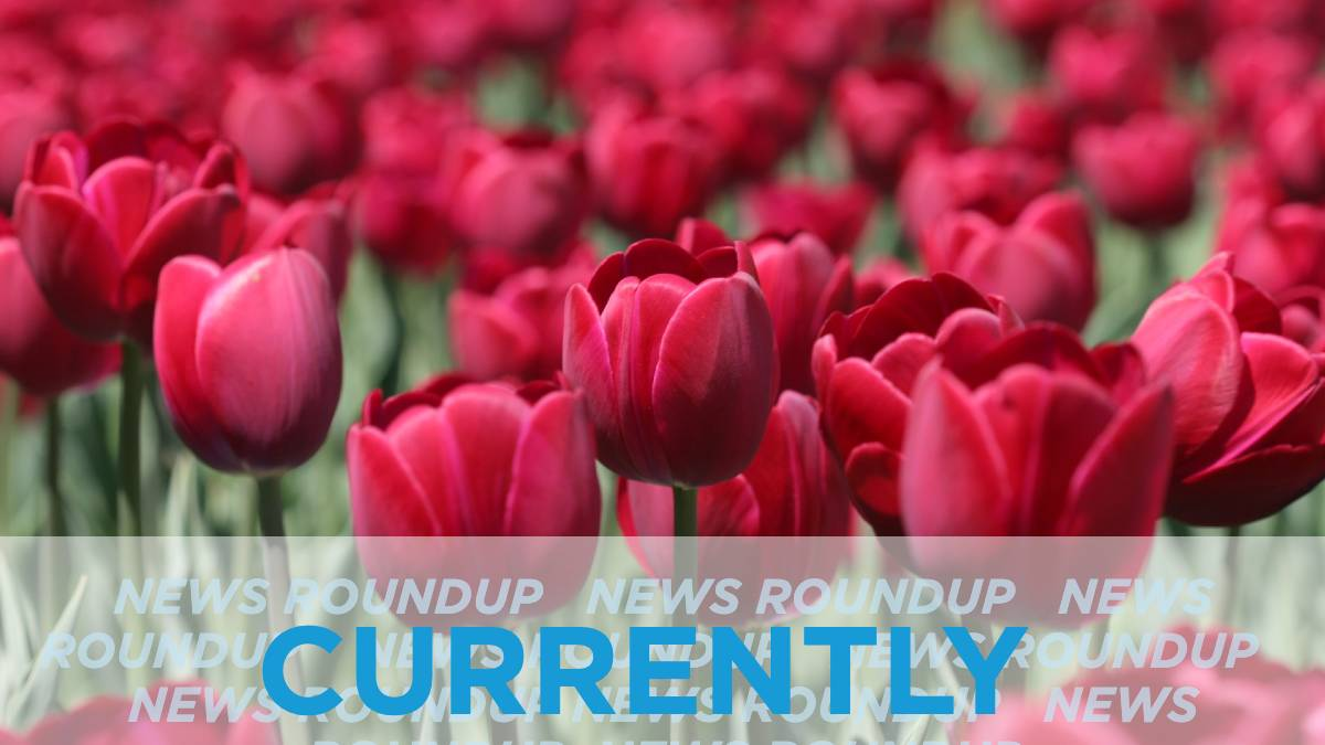 In the News: Thursday, April 16