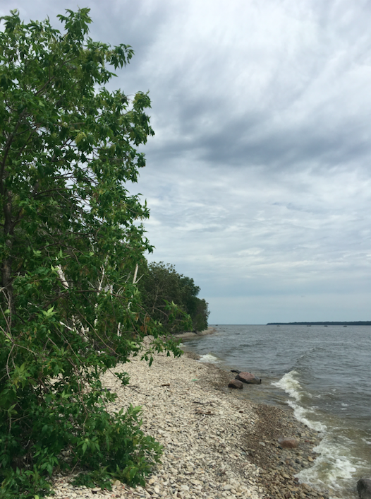 The shores of Lake Winnipeg in Hecla-Grindstone Provincial Park.