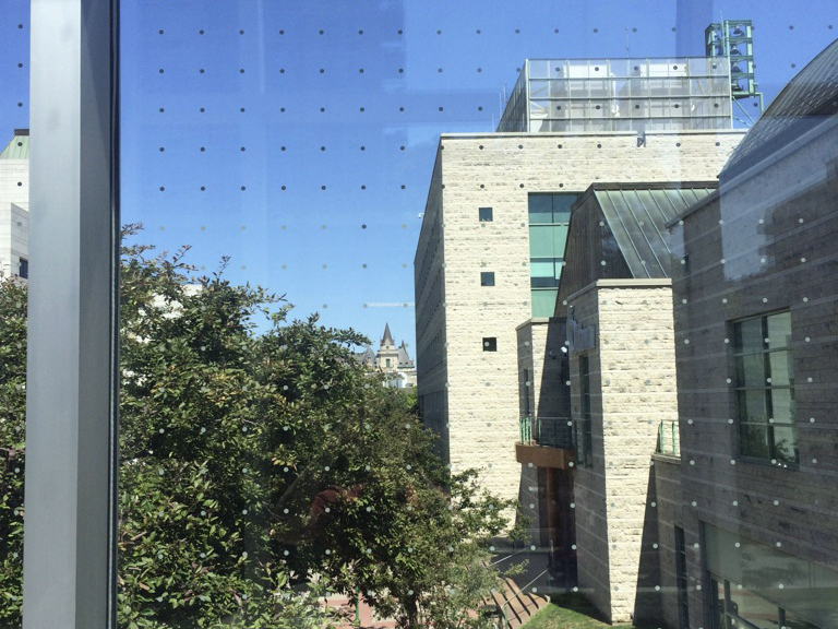 The glass walkway at Ottawa City Hall has a gird of small white dots on it. This retrofitted addition helps prevent birds from colliding into the reflective surface.