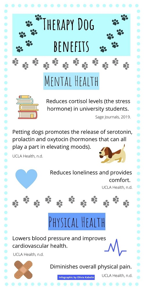 Infographic describing the benefits of therapy dogs.