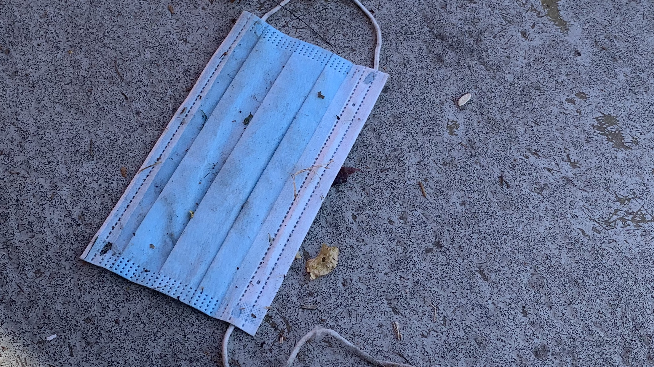Discarded single-use mask on the ground
