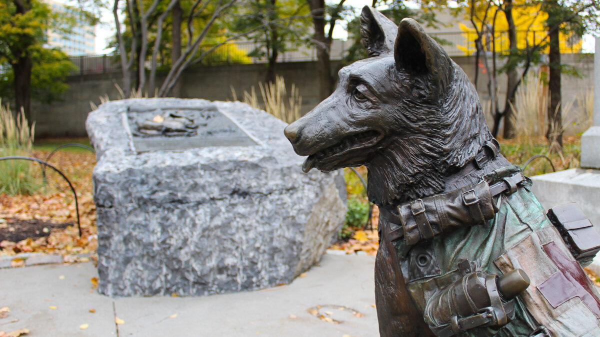 A statue of a medical service dog and a plaque blurred in the background.