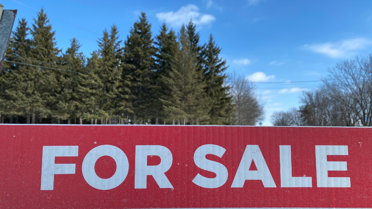 FOR SALE in white letters against red with tall pine trees and blue sky in the background