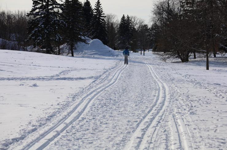 Lookahead '21: Winter trail brings vital outdoor relief to Covid-challenged Britannia community