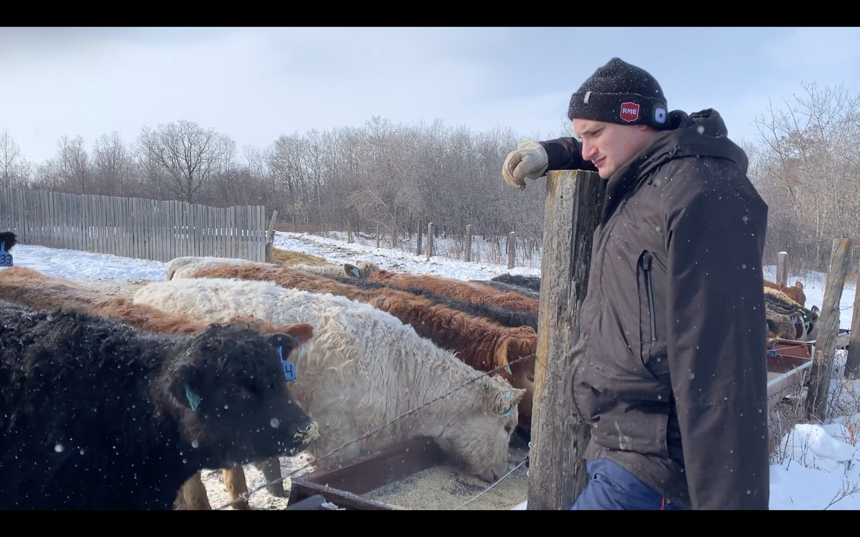 Dakota Odgers, on his family farm in Spy Hill, SK