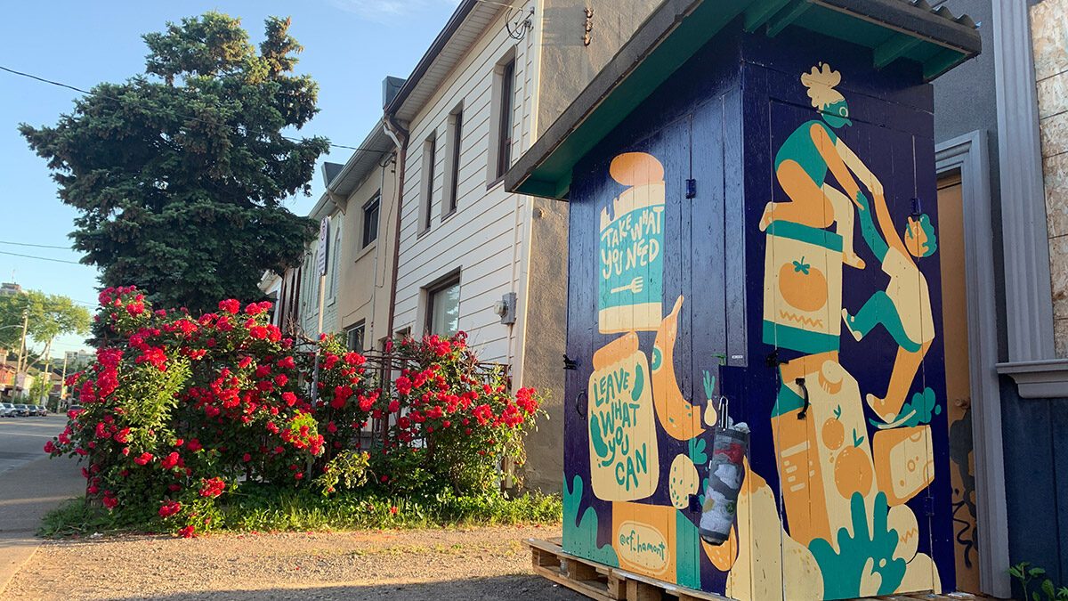 Open door possibilities: Community fridges are filling the gaps that cause food insecurity