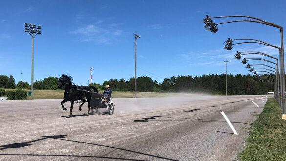 A horse runs down the Rideau Carleton racetrack.