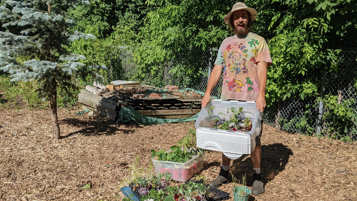 A man standing with a bunch of plants to garden with.