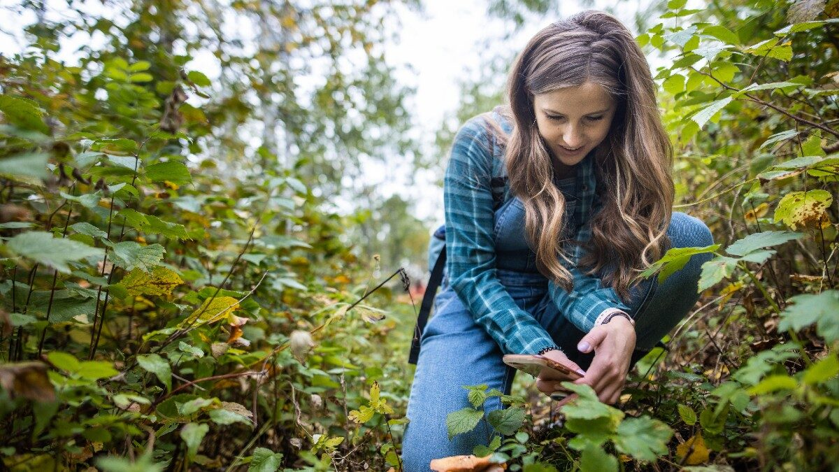 Second Backyard BioBlitz connects people with nature