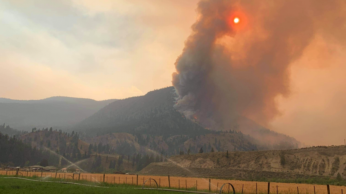 B.C. fires continue to burn, putting local ranchers at risk of losing property, animals and livelihoods
