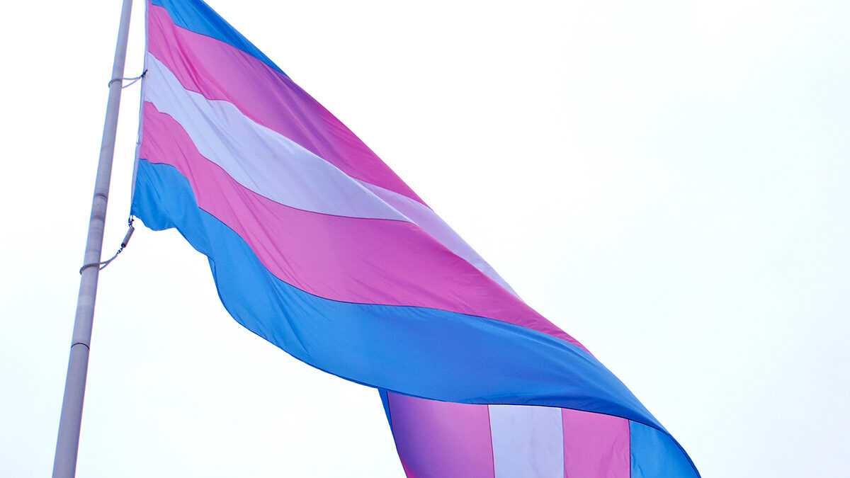 Huge gap in services for transgender newcomers, community workers in Ottawa say