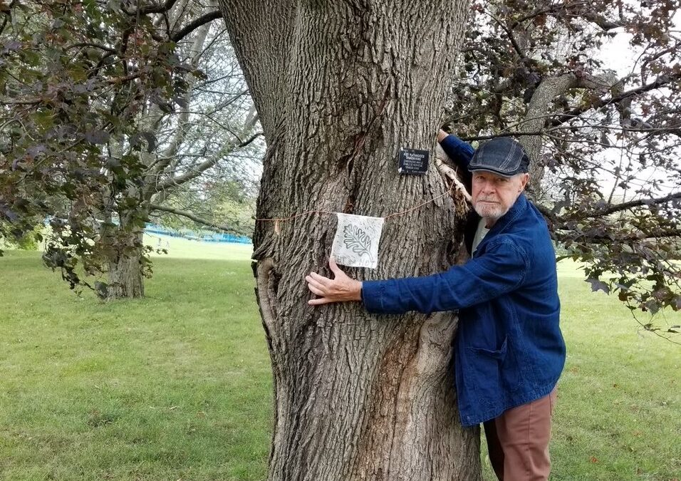 We Stand With Trees portrait project aims to protect 600 trees threatened by new Civic hospital campus