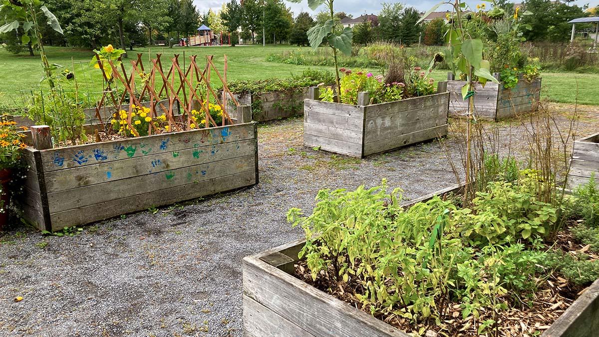 Slideshow image of the Orleans Children's Garden